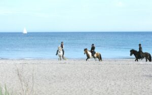 Ridetur med heste på stranden | Fonden Team Golå
